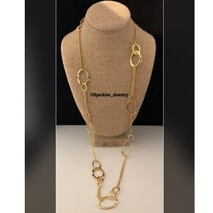 Chloe + Isabel Long Organic Link Chain Necklace